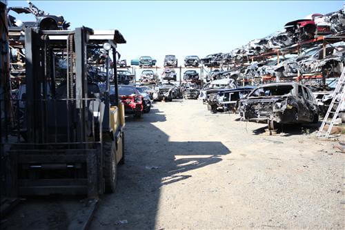 Full salvage yard!