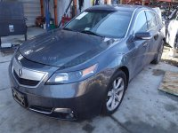 2012 Acura TL Rear passenger DOOR GRAY Replacement